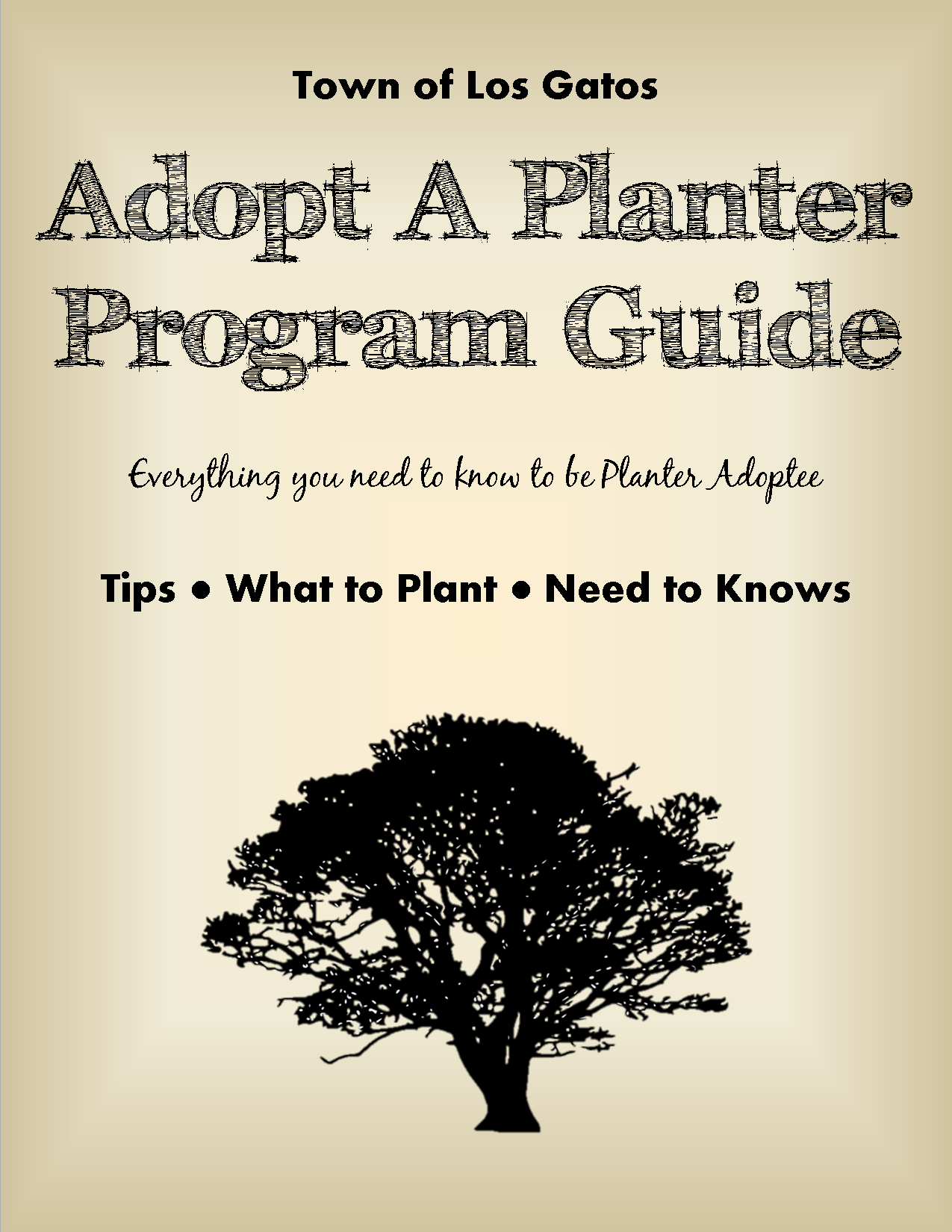 Downtown Planter Guidelines and Recommendations3