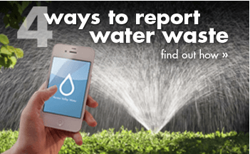 4ReportingWasteWays